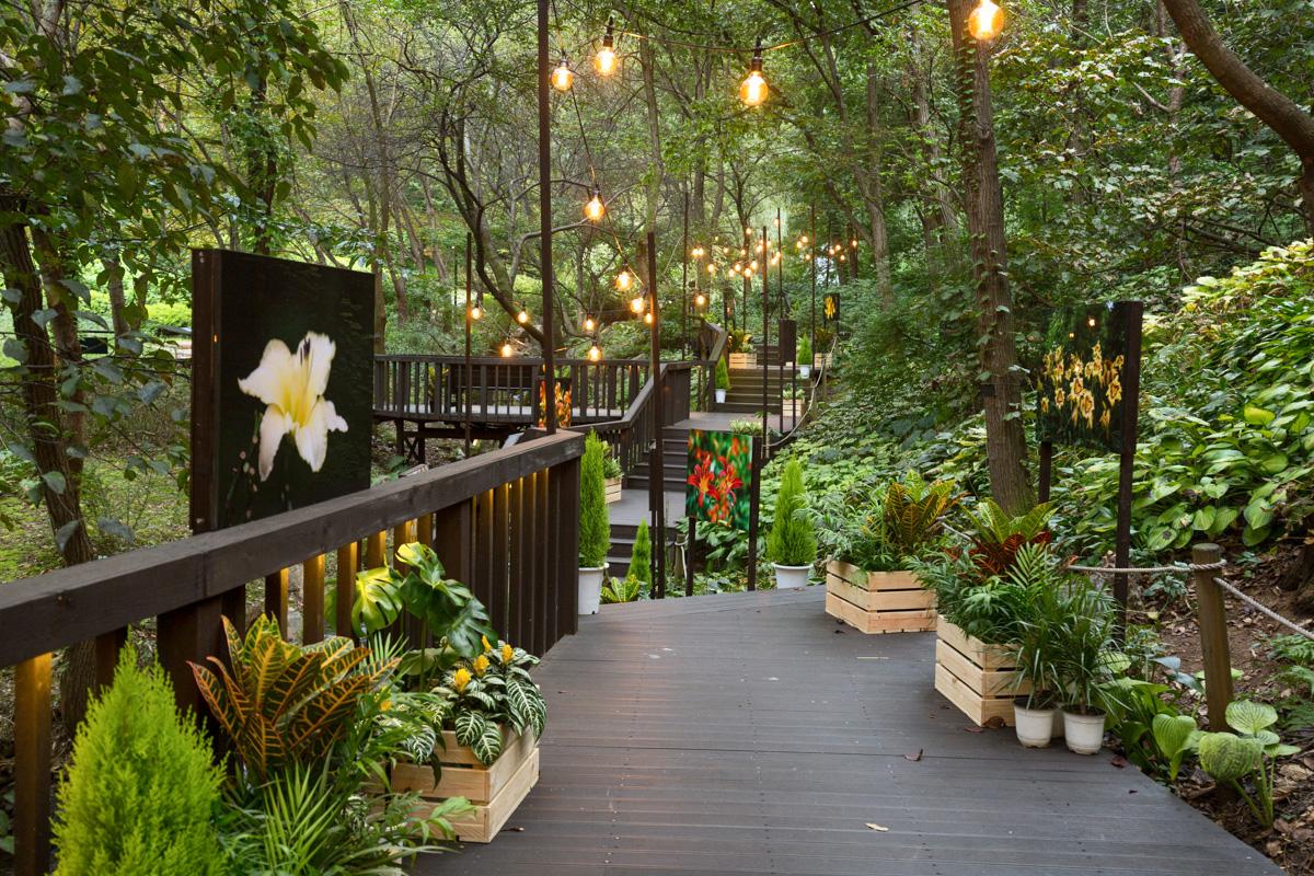 개장 이후 500만명 찾은 숲속 작은 유럽...'제이드가든' 수목원 개장 10주년