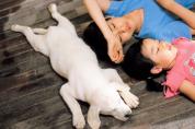 왓챠, '동물과 인간의 우정 이야기'로 편안한 재미와 감동 선물